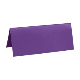 Marque Place rectangle carton x 10 Fuschia