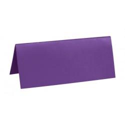 Marque Place rectangle carton x 10 Fuschia